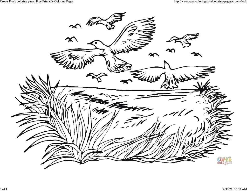 coloring sheet of a flock of crows flying over a field